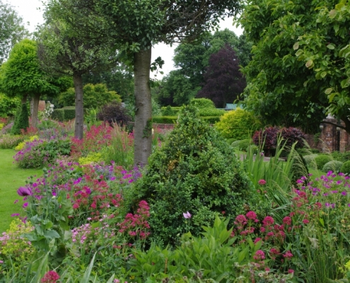 Raised Herbaceous Border